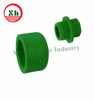 China plastic end cap ppr pipes fittngs