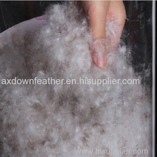 Wholesale 70% grey duck down and feather