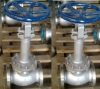 Stainless Steel and Cast Steel or Cast Iron Globe Valve