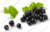 Black currant Juice Powder