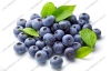 Blueberry anthocyanin /plant extract