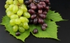 Grape skin anthocyanin- plant extract