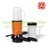 Multi Function Mini Food Processor / Food Blender