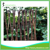 Expandable Folding Size Natural Black Bamboo Fence