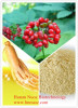Manufacturer supply high quality ginseng root extract/ginseng price 2014