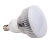 High Lumen 50W/80W LED High Bay Bulb