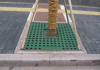 Decorative colorful SMC FRP GRP composite grille tree grating