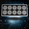 JYO 2014 grow light led red blue led lights apollo10 450w for plants in garden greenhouse