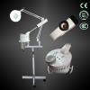 Professional facial steamers with magnifying lamp
