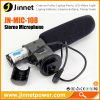 Popular stereo directional sensitivity microphone for DV camera