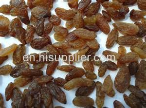xinjiang stulta/ red /green / golden seedless raisin