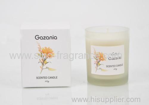 100g home decorative scented candle in Glass Jar with soft box