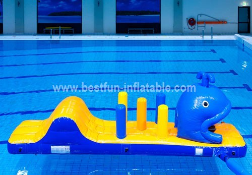 Adult inflatable water park