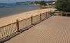 WPC composite decking project case of Waterscape platform