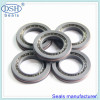 Spring energized ptfe seal various design