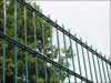 PVC coated double wire mesh fencing manufacture