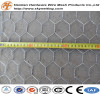 hexagonal wire netting/high quality hexagonal wire netting/high quality anping hexagonal mesh