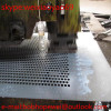 304 Perforated Metal Plates/Perforated Metal Mesh/Perforated Metal Sheets