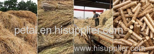 Rice Hulls Pellet Mill/Rice Hulls Pellet Mill for Sale/Fote Pellet Mill