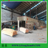 timber hot sale wood veneer mersawa wood veneer with high quality