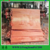 Shandong wahkoon rotary cut birch wood veneer/2*8 wood veneeer Burchella Veneers