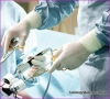 disposable surgical gloves latex manufacturers disposable medical