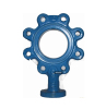 High Standard Machining Butterfly Valve Body Casting Parts