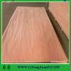 Oak veneer Bingtangor veneeer plywood sheet