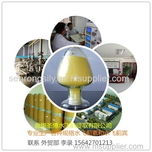 silymarin powder UV80% milk thistle extract 80%