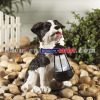 Dog Statue Solar Lantern Light
