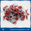 Flat head semi tubular blind rivets