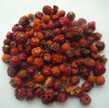 Rosehip fruits shell and teabag cut