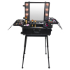 Black Cosmetics Mini Studio Makeup Case With lights trolley