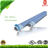 9W 2ft 600mm Rotatable T8 LED Tube UL/CUL/DLC approval Aluminum+PC Single end powered Tubular T8 LED Lamp 5Years