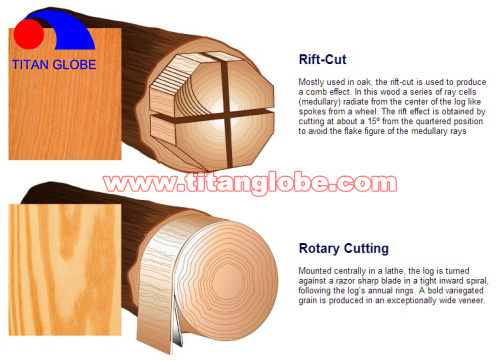 Natural Wood Veneer For Plywood / Cheap Hardwood Veneer / MLH Veneer - Titan Globe