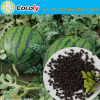green vegetable Nitrogen fertilizer +TE fertilizer