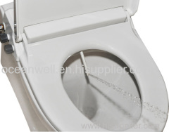 Simple Bidet Toilet Seat With Cold Water