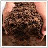 Palm Kernel Cake/Meal Feed