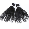 Kinky Curly Virgin Hair Extensions Unprocessed Virgin Hair Bundles