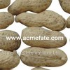 Peanut In Shell Product Product Product