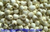 White and Black lotus seed