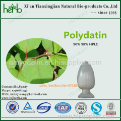 Giant Knotweed Extract Polydatin