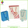 Promotion Paper Packing Shopping Gift Bag