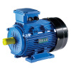 HP Electric Motors 0.75 ~ 5000 kW 380 ~ 13800 V High Efficiency Variable Speed High Voltage Low Voltage