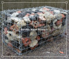 hot galvanized weld mesh gabions