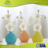 Reed Diffuser Set for home