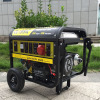 Electirc Start Whole House Propane Generator Whole House Natural Gas Generator Easy Move LPG Generator