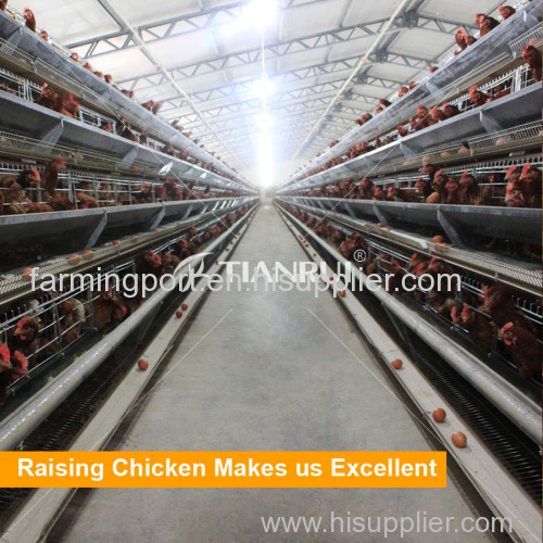 Low Price Automatic A Type Poultry Battery Cage System