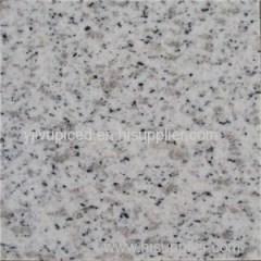 Shandong Seasome White Color G365 White Sparkle Granite Floor
