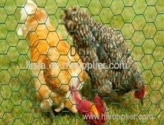 Hot-dipped galvanized or PVC coated hexagonal wire mesh/chicken wire
